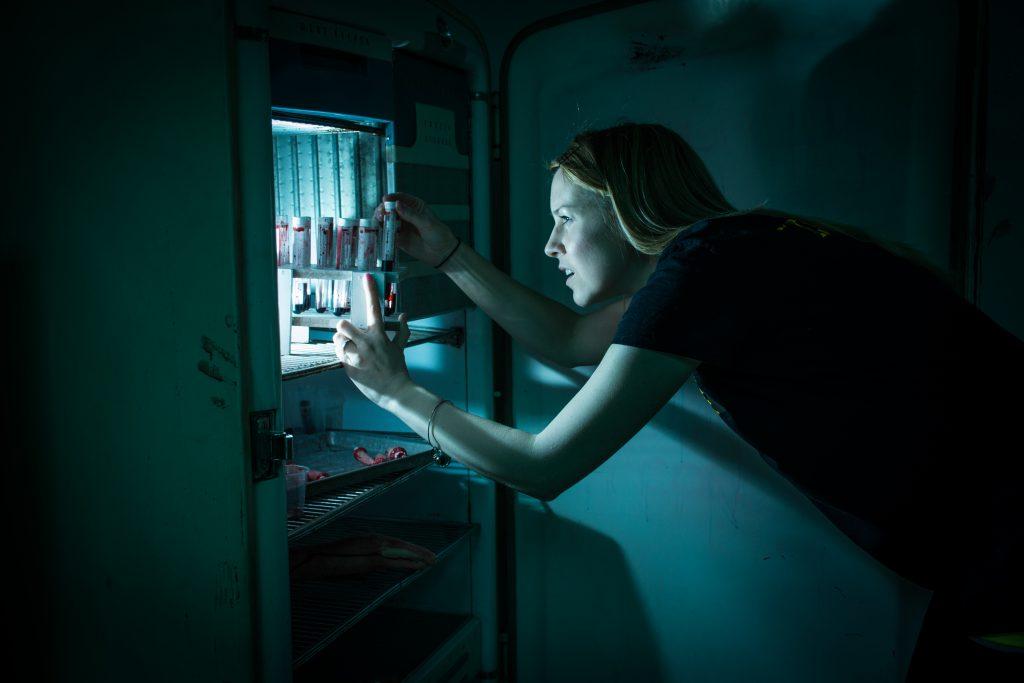 woman looking in a fridge